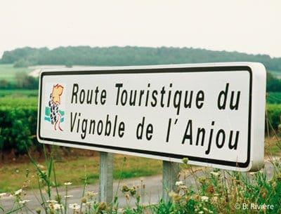 Thouarcé est sur la route du vignoble d'Anjou