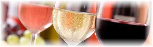 Quoi faire : dégustation des vins d'Anjou