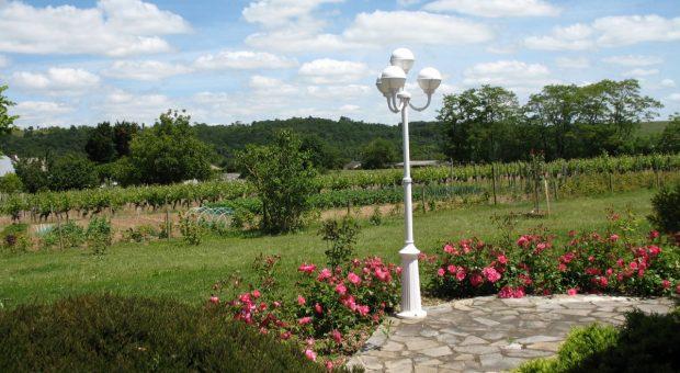 Le paysage vu de la terrasse du gîte
